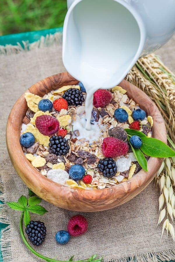 Gezonde muesli met bessen en melk in tuin stock fotografie