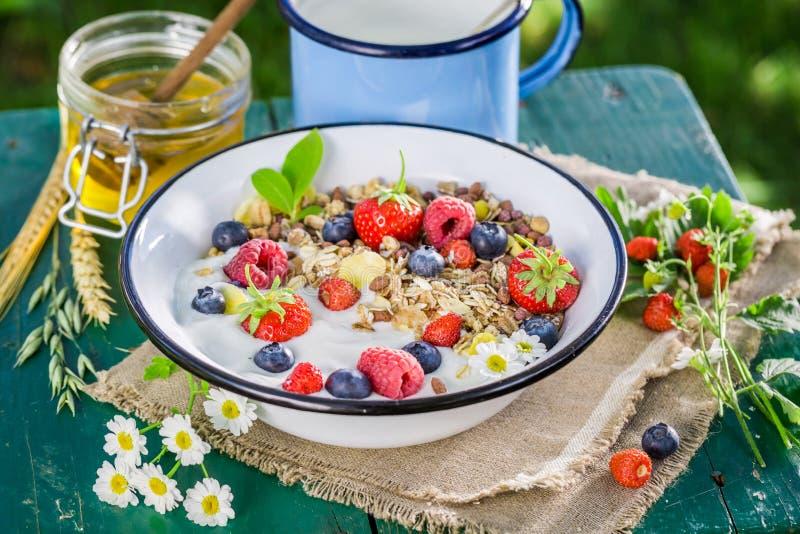 Gezonde muesli met bessen en yoghurt royalty-vrije stock fotografie