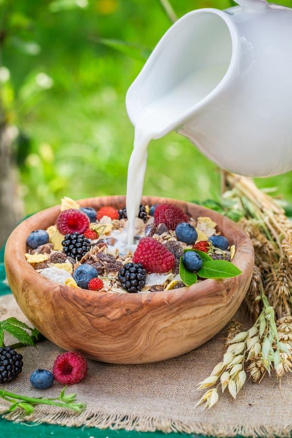 Gezonde muesli met melk en bessen in tuin royalty-vrije stock afbeeldingen