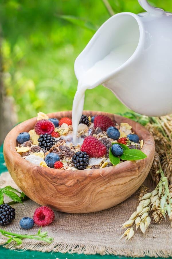 Gezonde muesli met melk en bessen in tuin royalty-vrije stock foto's