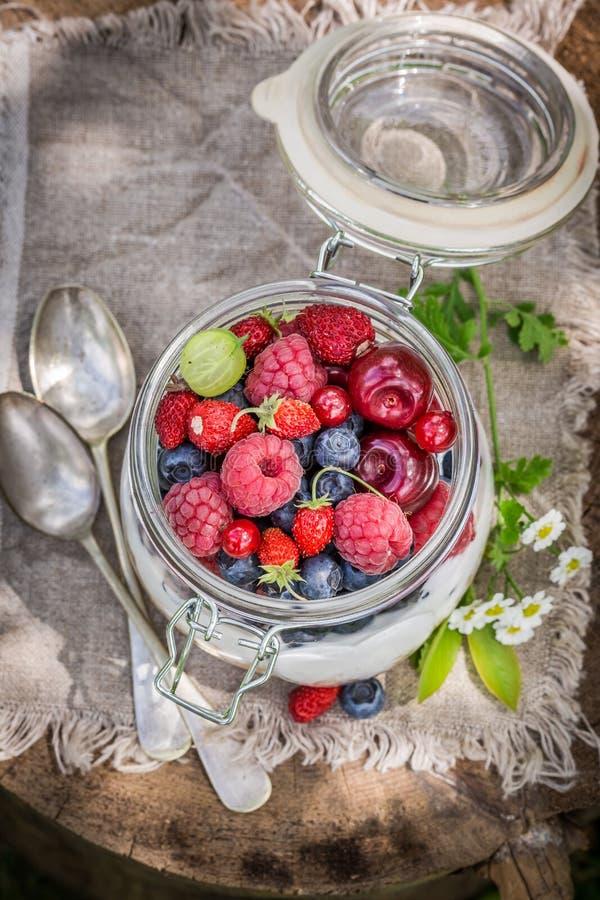 Gezonde muesli met yoghurt en bessen royalty-vrije stock fotografie