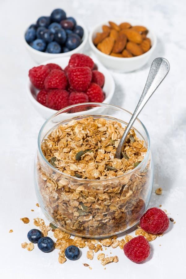 Gezonde ontbijtgranola en verse bessen op witte achtergrond stock foto