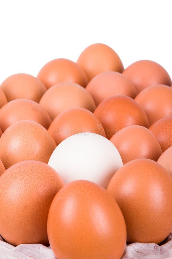 Gezonde Organische Eieren royalty-vrije stock foto's