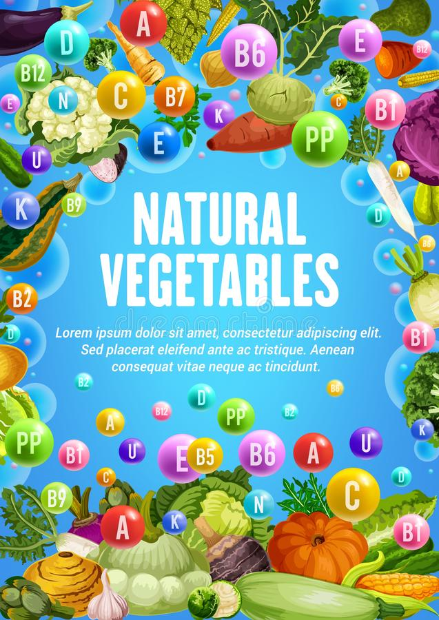 Gezonde vitaminen in organische vegetarische groenten royalty-vrije illustratie