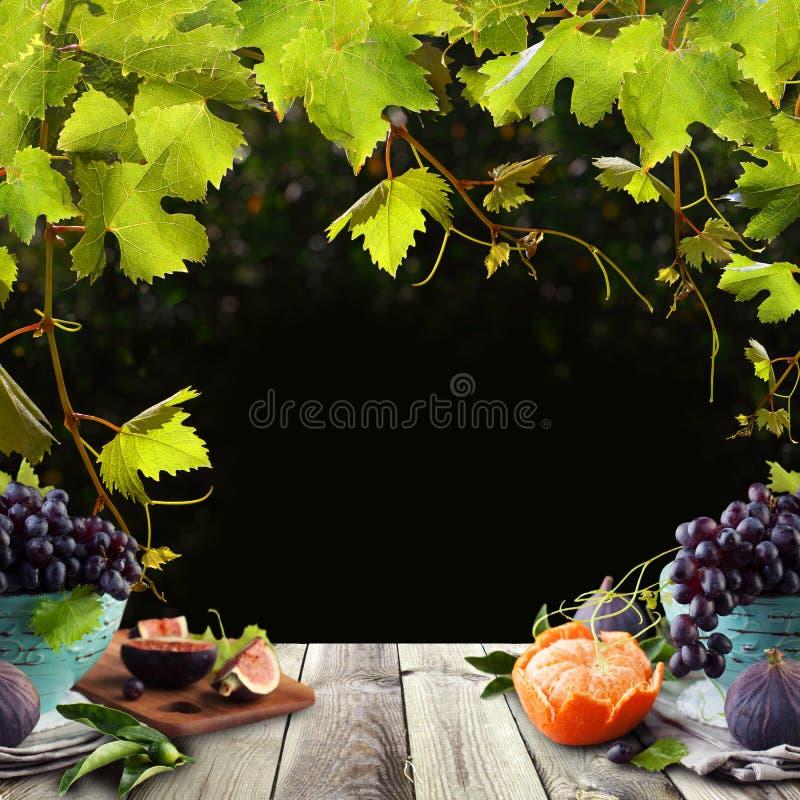 Gezonde voedselachtergrond met vruchten, groene druivenbladeren en grijze houten lijstraad vector illustratie