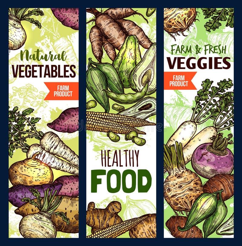 Gezonde voedselbanners, exotische groenten stock illustratie