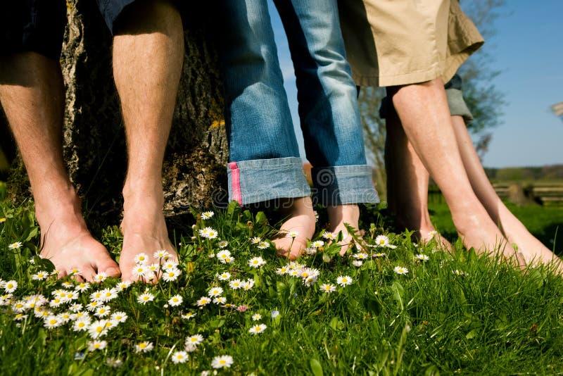 Gezonde voeten: In een rij royalty-vrije stock foto