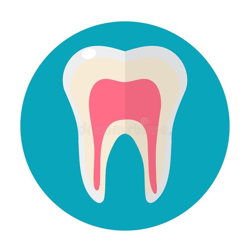 Gezonde witte tanden Pictogram vlakke stijl Tandheelkunde, tandartsconcept Geïsoleerdj op witte achtergrond Vector illustratie vector illustratie