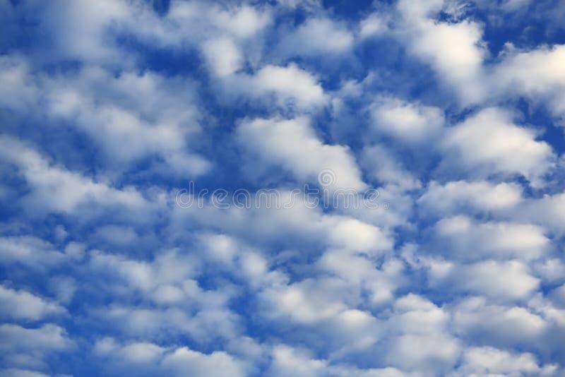 Gezwollen Wolken op Blauwe Hemelachtergrond stock afbeelding
