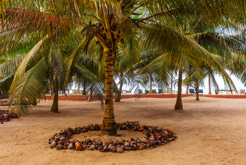 Ghana Coastline stock photos