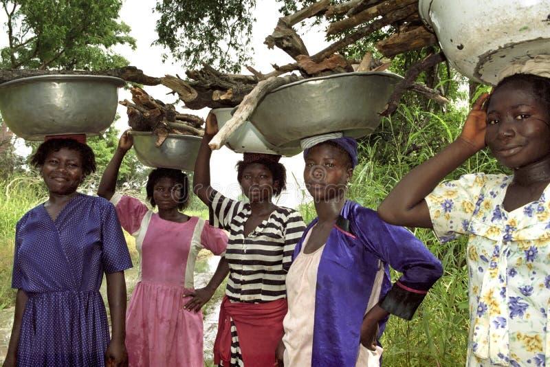 Ghananska kvinnor bär vedträ på deras huvud arkivbild