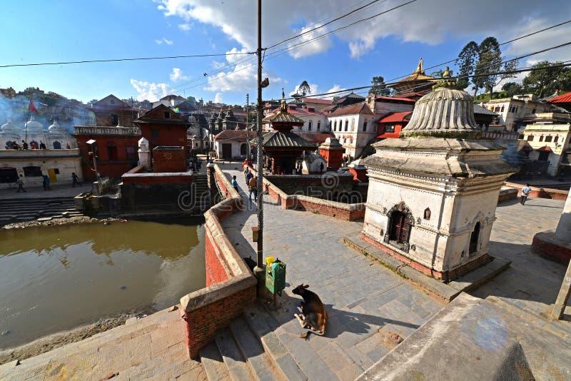 Ghats d'incinération dans Pashupatinath avant le tremblement de terre Kathmand photographie stock libre de droits