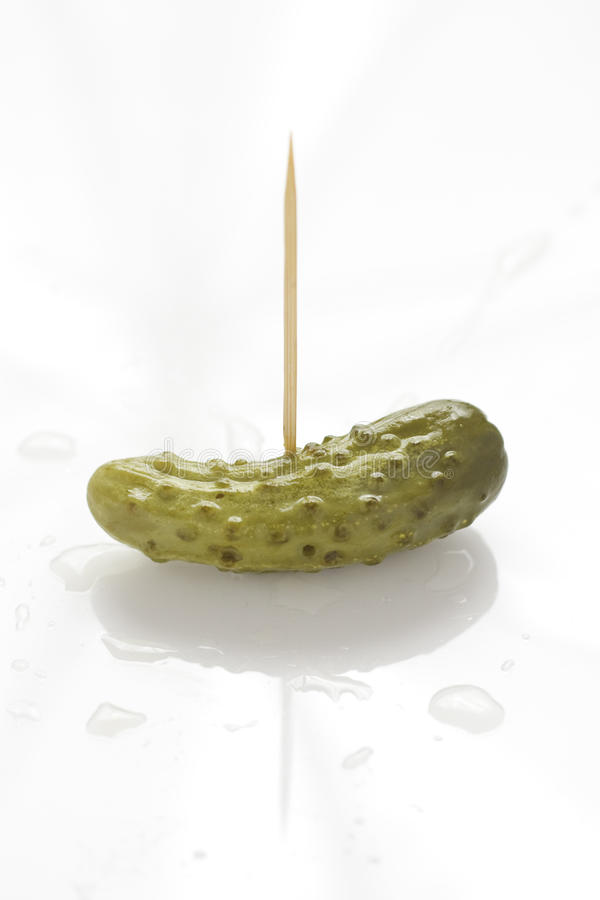 Download Gherkin on a stick stock photo. Image of color, cornichon - 37896790