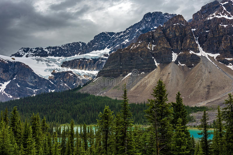 Ghiacciaio del ranuncolo in strada panoramica di Icefields fotografia stock