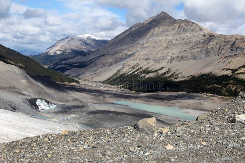 Ghiacciaio di Athabasca - sosta nazionale del diaspro fotografia stock libera da diritti