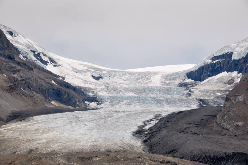 Ghiacciaio di Athabaska sulla strada panoramica di Icefield in tutto è splendeur, camice fotografia stock