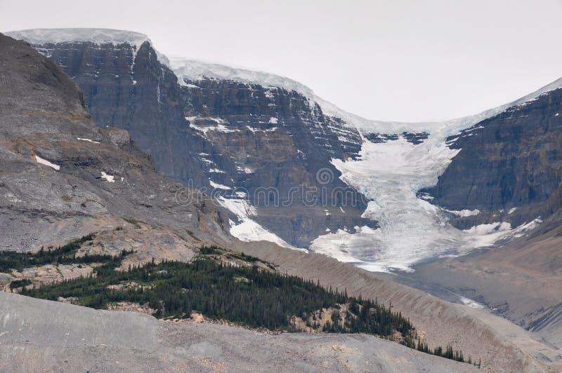 Ghiacciaio di Athabaska sulla strada panoramica di Icefield in tutto è splendeur, camice immagini stock libere da diritti