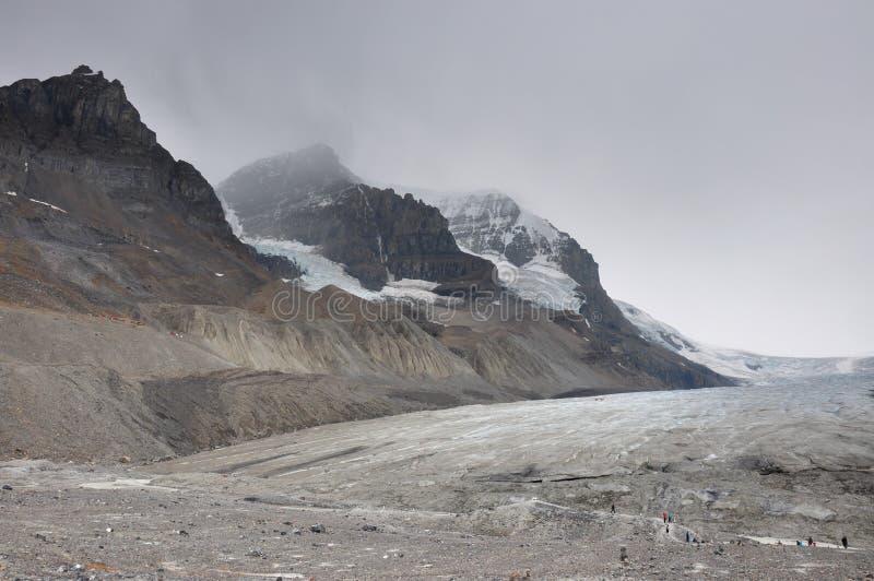 Ghiacciaio di Athabaska sulla strada panoramica di Icefield in tutto è splendeur, camice immagini stock