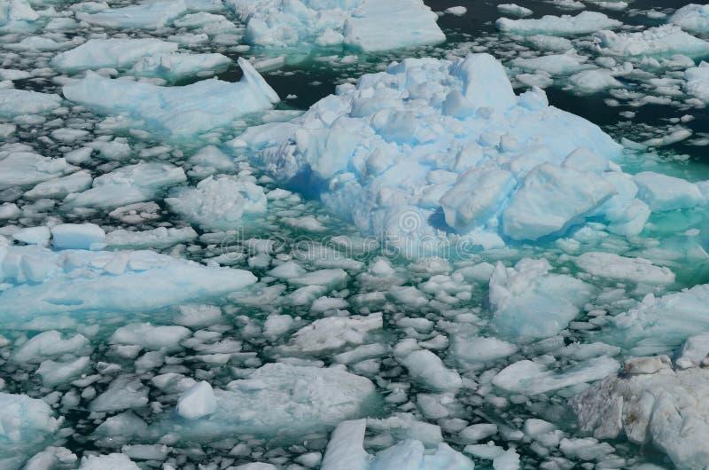 Ghiacciaio di Steffen nel giacimento di ghiaccio patagonian del sud di Campo de Hielo Sur, Patagonia cilena fotografia stock libera da diritti
