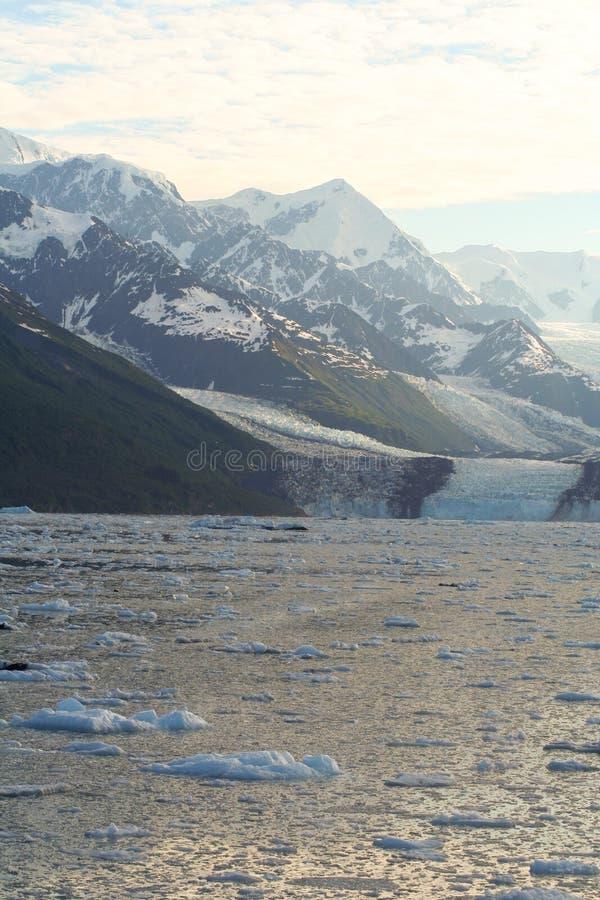 Ghiacciaio e ghiaccio immagine stock