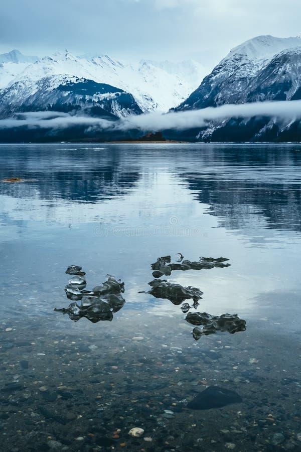 Ghiaccio lungo il Chilkat, Haines Alaska fotografia stock libera da diritti
