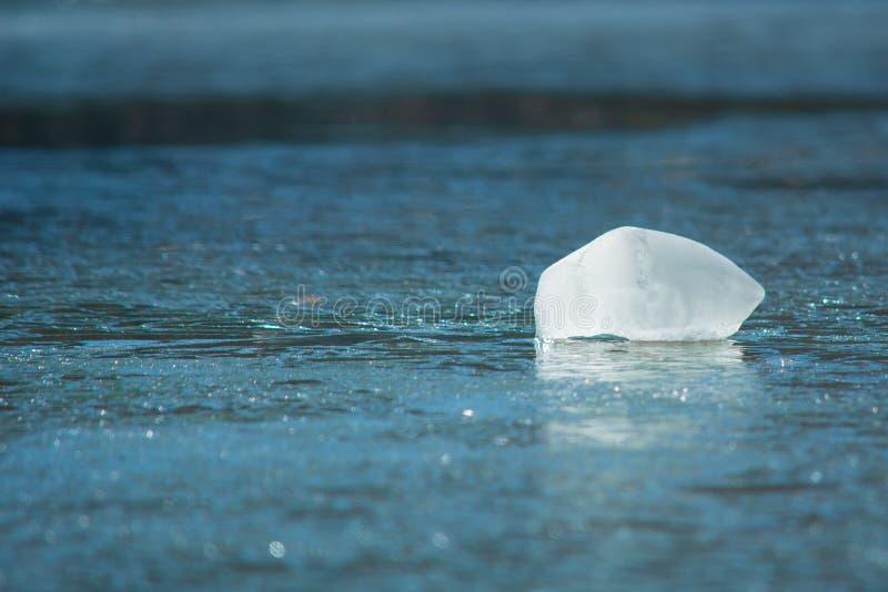 Ghiaccio sul lago nel Kentucky centrale immagine stock libera da diritti
