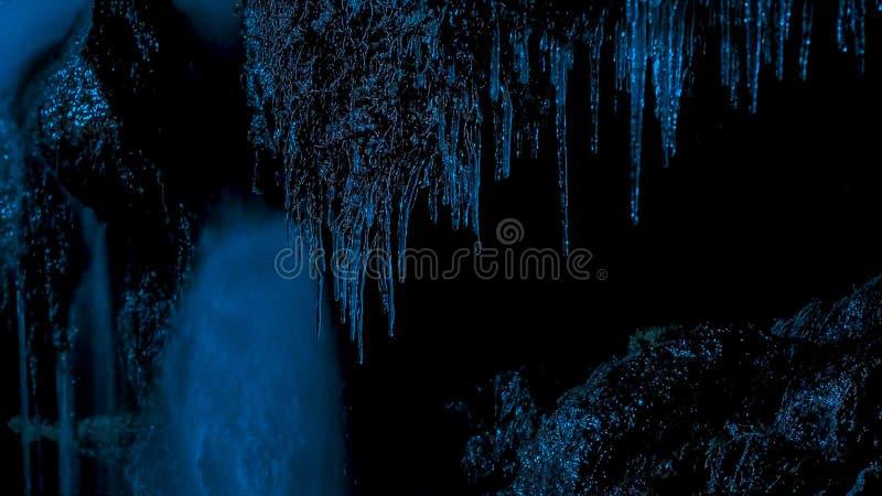 Ghiaccioli alla notte contro il buio della foresta e della penombra di inverno immagine stock