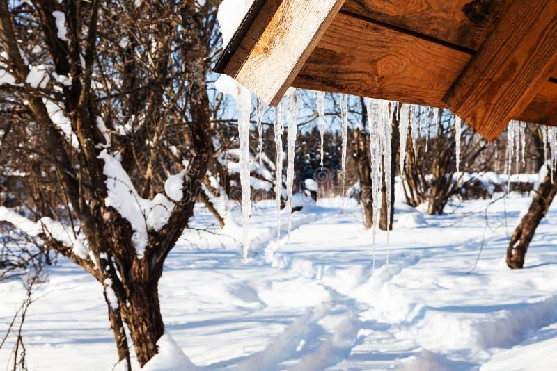 ghiaccioli da neve di fusione sull'orlo del tetto fotografia stock