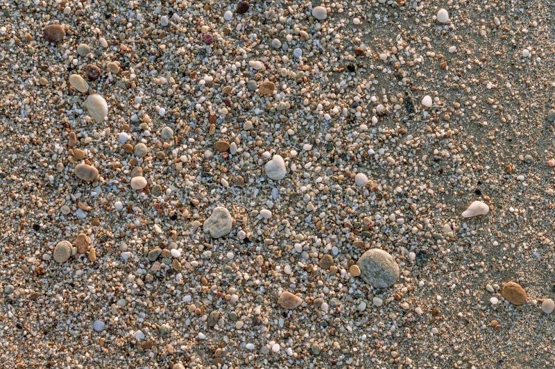 Ghiaia naturalmente arrotondata alla riva di mare, fondo del mare della natura immagini stock libere da diritti