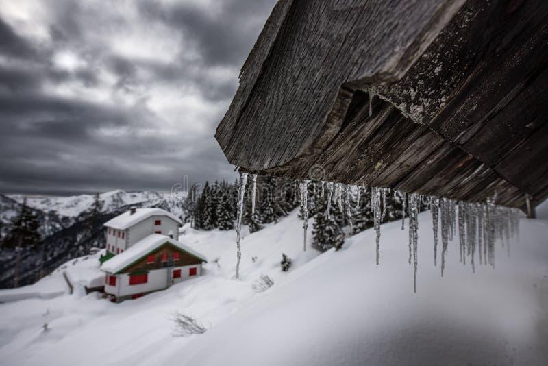 Ghirlanda del ` dei ghiaccioli nelle alpi fotografie stock libere da diritti