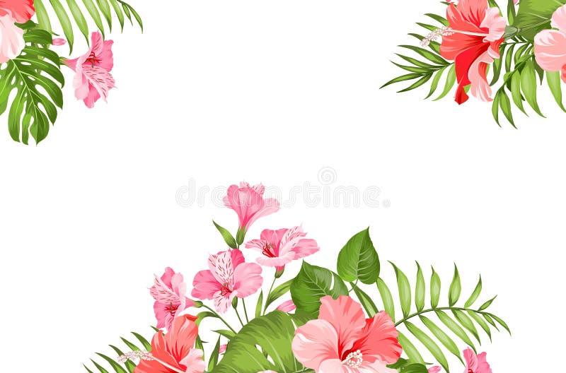 Ghirlanda tropicale del fiore isolata sopra fondo bianco Mazzo dei fiori tropicali aromatici Modello della carta dell'invito illustrazione vettoriale