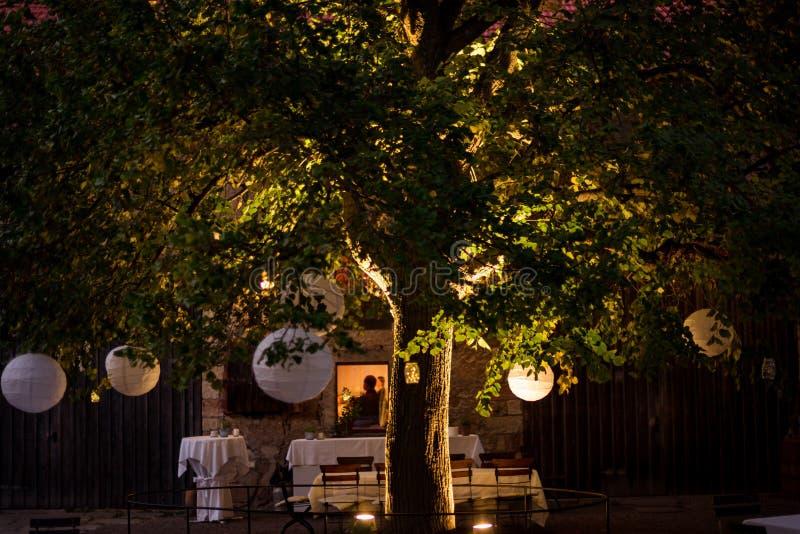 Ghirlande e decorazioni su un grande albero Un partito immagine stock
