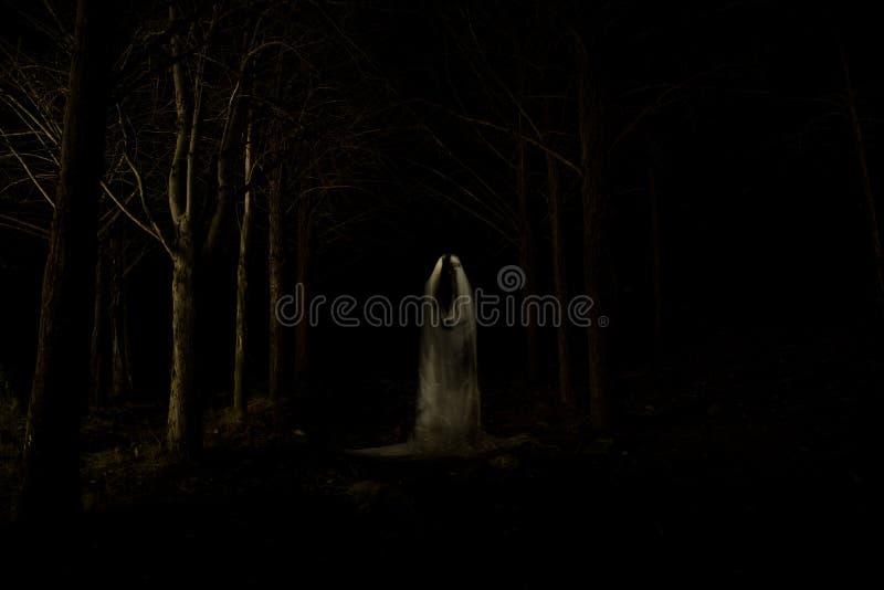 Ghost dans la forêt foncée photo stock