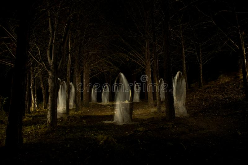Ghost family in the dark forest royalty free stock images