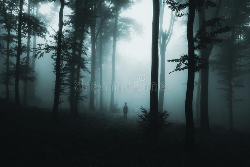Ghost in the fog in dark spooky woods. Mysterious man silhouette in dark haunted forest with fog on Halloween. Dark forest background royalty free stock images
