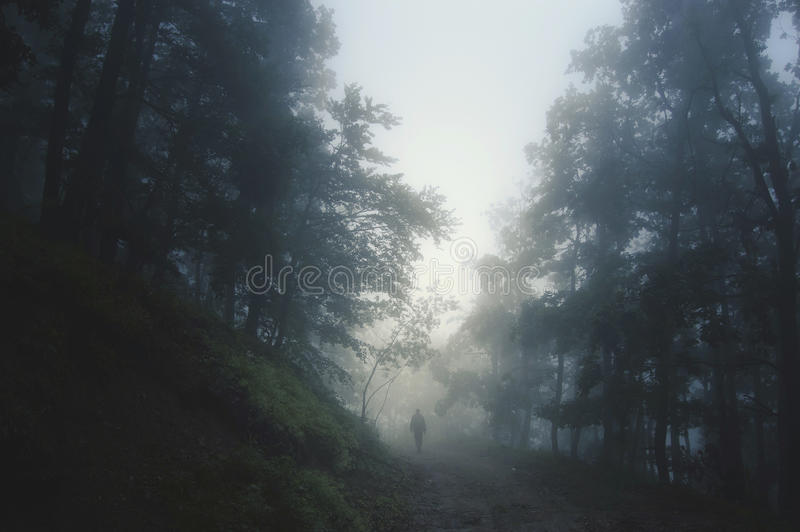 Ghost at forest edge. Ghost silhouette on mysterious fantasy forest edge stock photos