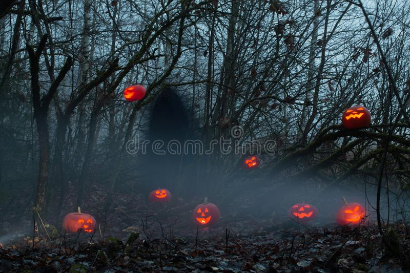 Ghost with halloween pumpkins in night forest. Ghost with halloween pumpkins in magic night forest stock photos