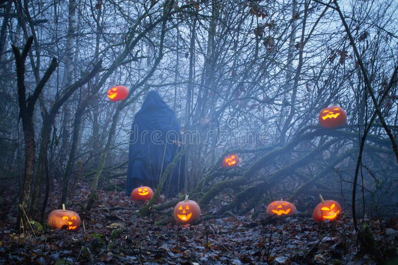 Ghost with halloween pumpkins in night forest. Ghost with halloween pumpkins in mystery night forest stock photography