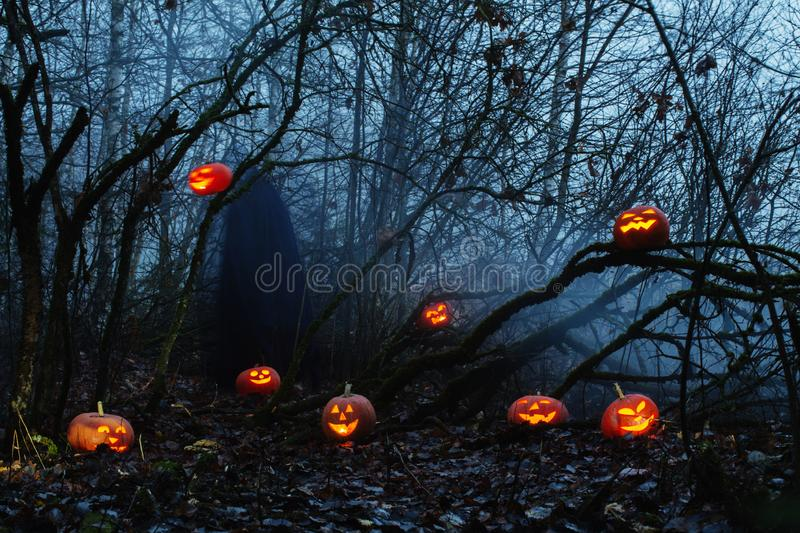 Ghost with halloween pumpkins. In night forest stock images