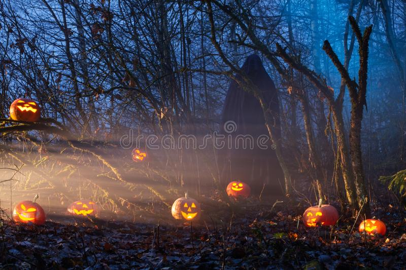 Ghost with halloween pumpkins in night forest. Ghost with halloween pumpkins in magic  night forest royalty free stock photo