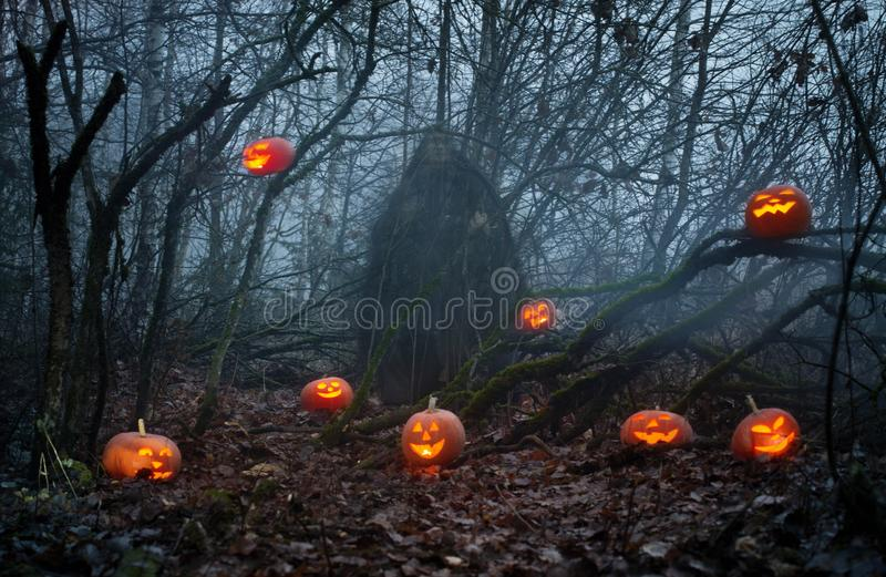 Ghost with halloween pumpkins in night forest. Ghost with Halloween pumpkins in mystery night forest royalty free stock photography