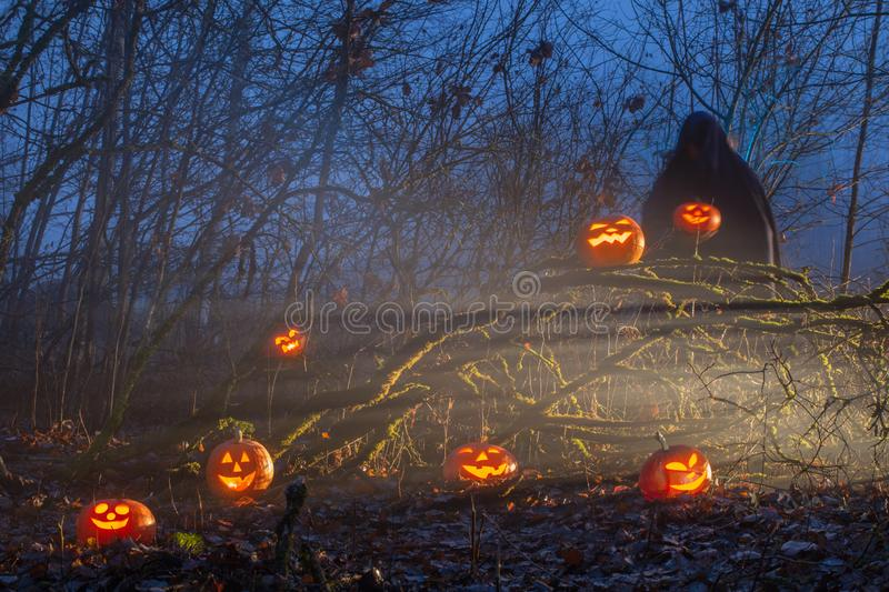 Ghost with halloween pumpkins in night forest. Ghost with halloween pumpkins in mystery  night forest stock photos