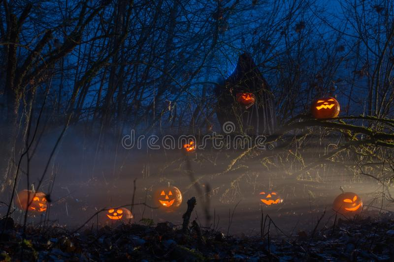 Ghost with halloween pumpkins in night forest. The ghost with halloween pumpkins in night forest stock image