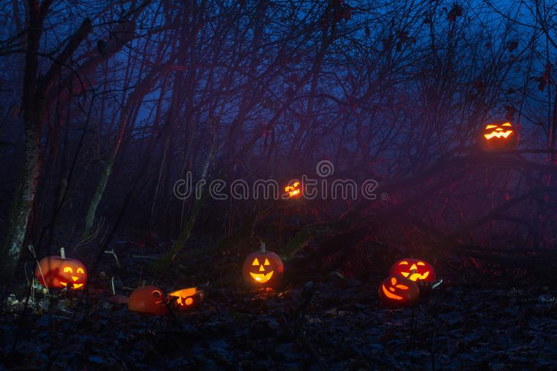 Ghost with halloween pumpkins in night forest. The ghost with halloween pumpkins in night forest stock images