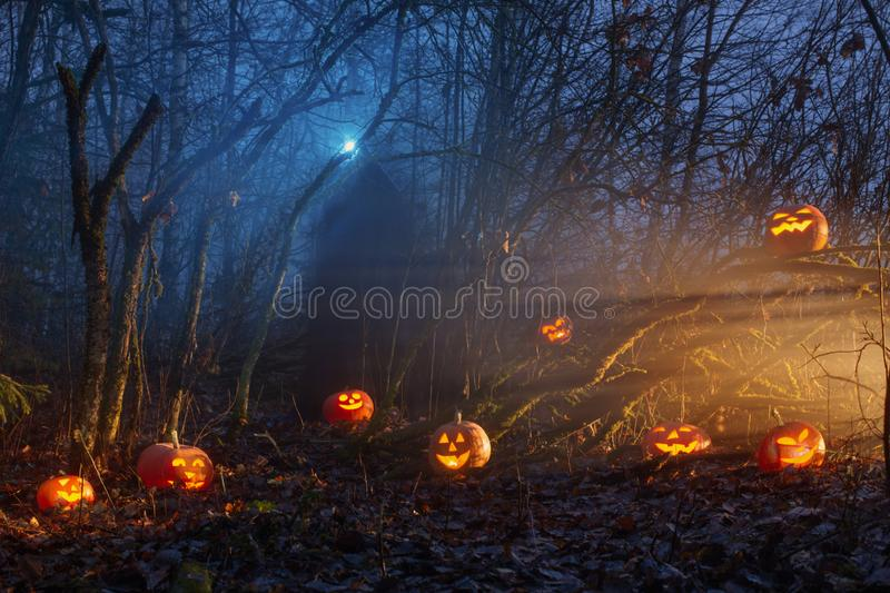 Ghost with halloween pumpkins in night forest. The ghost with halloween pumpkins in night forest royalty free stock photos