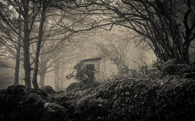 Ghost house in the fog stock photography