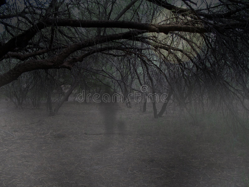 Download Ghost in Woods stock illustration. Image of gothic, halloween - 4170891