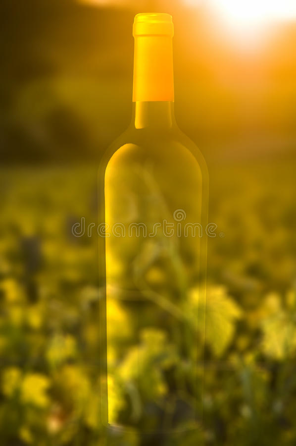 Ghosted Wine Bottle Royalty Free Stock Images