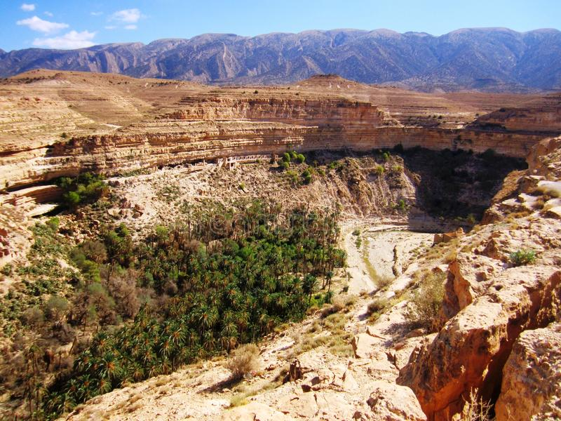 Ghoufi canyone Algeriet royaltyfria foton
