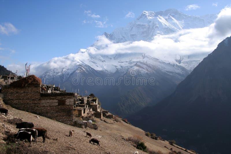 Ghyaru Village